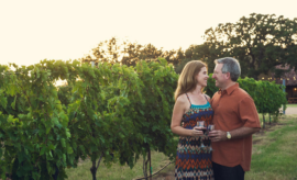 All Aboard for a Luxury Wine Tour Through the Hill Country