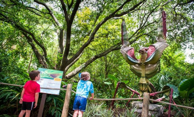 Big Bugs Exhibit Invades Houston Zoo With Larger-Than-Life Specimens
