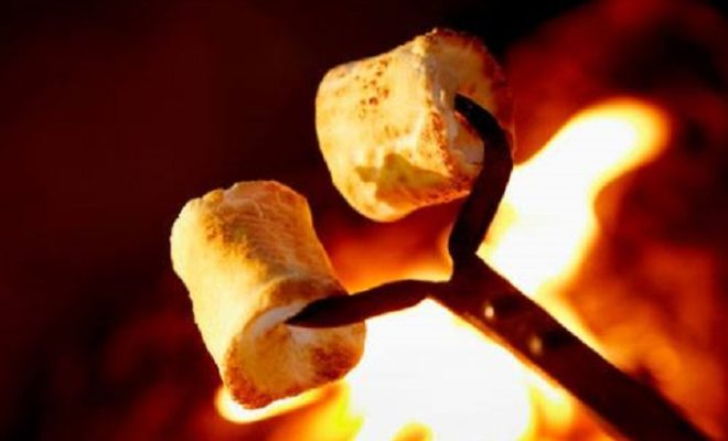 Tasty Campfire Snacks Kids Can Make That Are Easy and Classic