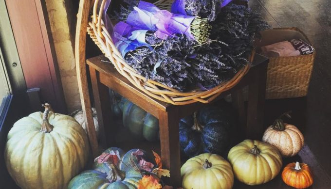 Pumpkin, gourds, and lavender