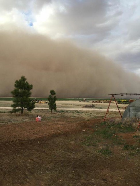Massive Dust Wall Rolls Into Texas Panhandle