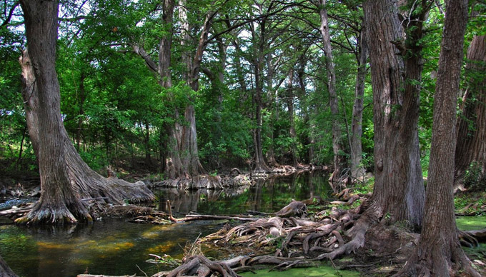 12 Hill Country Hikes You Need to Try