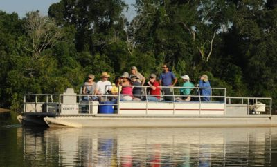 eco boat tours