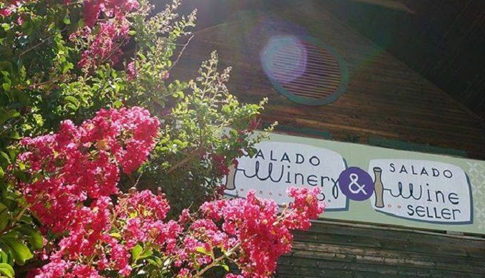 Salado Spring Events Set to Draw Great Turnouts for Beer, Wine, & All Things Fine (Art That Is)
