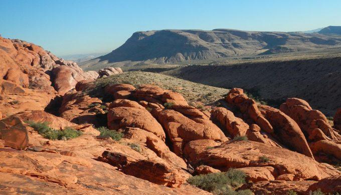 Desert in Big Bend National Park