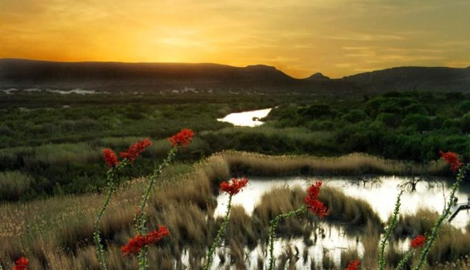 What Wikipedia Can't Tell You About Texas Scenery Will Knock Your Socks Off