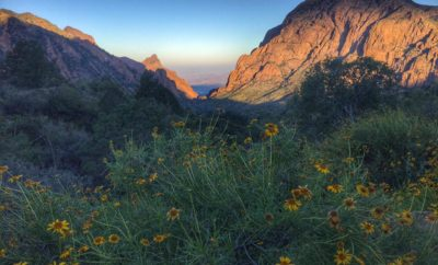Hiking the Window Trail at Big Bend: Gasps of Amazement Vs. Exertion Level Equals 'Winning'