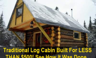 $500 Tiny Home is a Log Cabin Lover's Dream