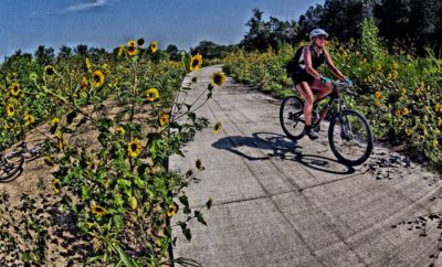 Bicycling the Texas Hill Country on Walnut Creek Trail in Austin