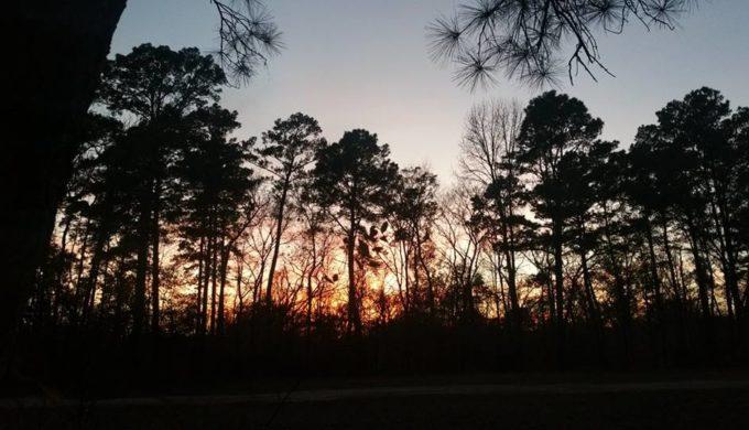 The Lone Star Hiking Trail: Ninety-Six Miles (Plus) of Pure Texas Pleasure