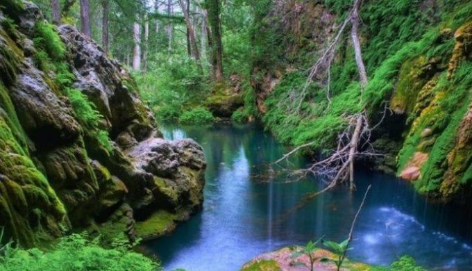 A Texas Hill Country Gem of Nature: Visiting Westcave Preserve