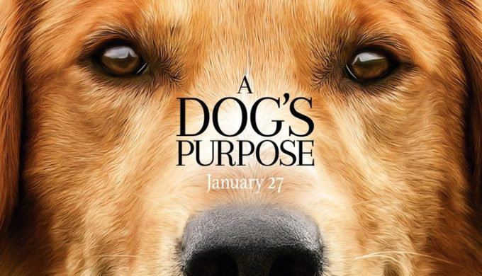 'A Dog's Purpose': Movie Reeling from Allegations of Animal Abuse