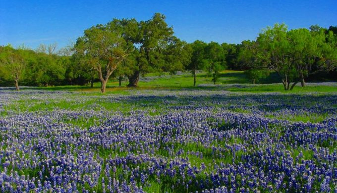 5 Natural Wonders of Texas You Won't Want to Miss This Summer