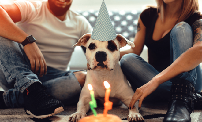 Texas Couple Reacquaints After Former Dog Owner Sends Loving Birthday Card To Pet Pooch