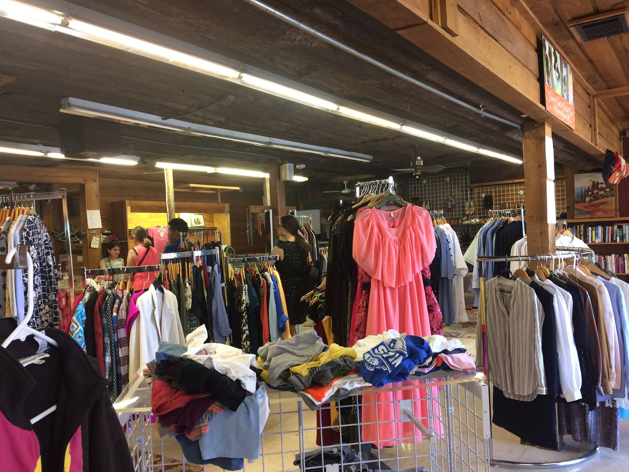 Austin Pets Alive Thrift Thrifting For A Cause