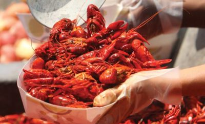 Why the Kemah Crawfish Festival is the New Black