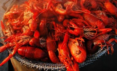 50 Shades of Cray: 2018 Crawfest New Braunfels Isn't a Cookie Cutter Festival