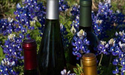Bluebonnet Wine & Cheese Trail