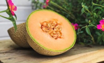 A West Texas Farm is Producing the Pecos Cantaloupe and It's a Sweet Success Story
