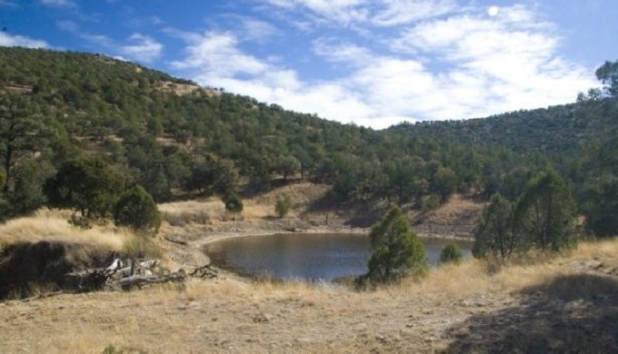 Madera Canyon Hiking Trail: Nature Conservancy's Small Slice of Heaven in the Davis Mountains
