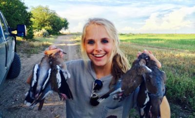 Where to Dove Hunt in Texas, and One Great Reason to Do It