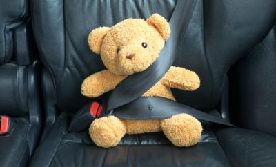 Teddy Bear with a seat belt