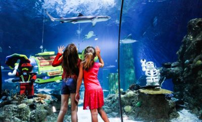 Get Psyched San Antonio: LEGOLAND Discovery Center & Sea Life Aquarium Opening Soon