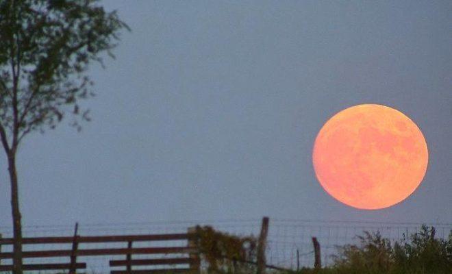 Farmers Moon