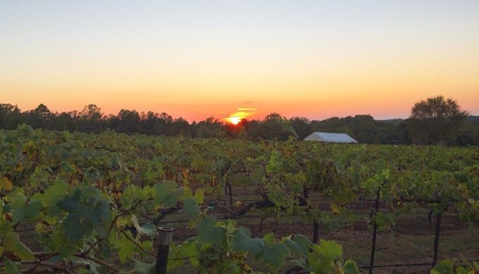 3 Top Texas Wineries You Can Spend the Night At