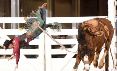 Legendary Fort Worth Stock Show & Rodeo in Its 122nd Year