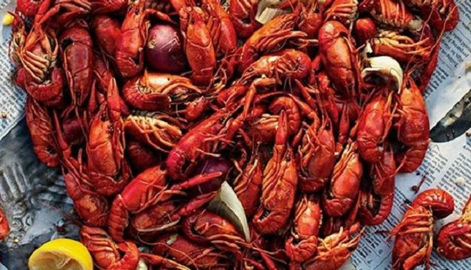 3 Texas Early Spring Crawfish Festivals You Won't Want to Miss