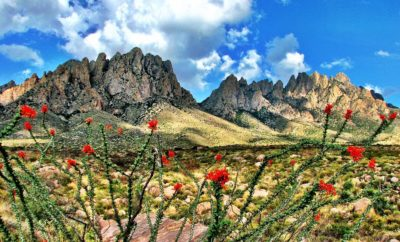 Terlingua Texas Archives - Texas Hill Country