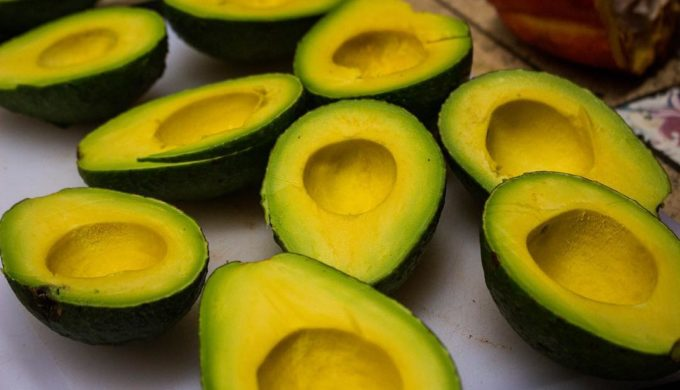 Guacamole Paradise: Farmer Growing Giant Avocados the Size of Babies