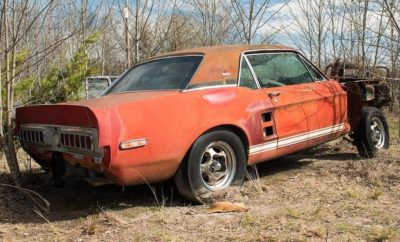 Missing 1967 Ford Shelby GT500 Prototype Found Rotting in North Texas Field