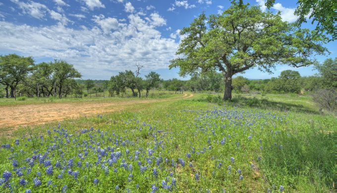 Explore TexasLand.com to See the Most Beautiful Spots in Texas