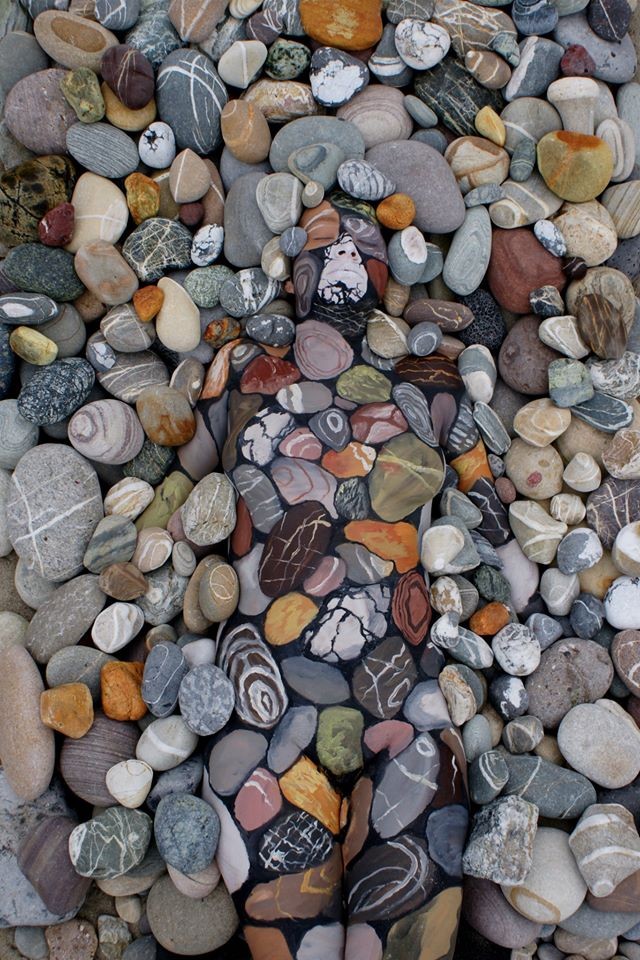 Can You Spot What's Hiding Among These Beautiful Rocks?