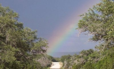 The Hill Country State Natural Area: A True Unpolished Gem