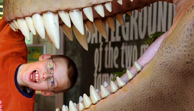 Spectacular Spring Break Fun at the Don Harrington Discovery Center