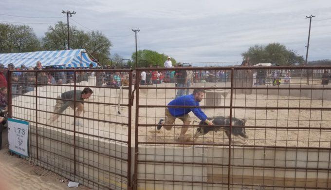 Woody Harrelson & PETA Ask Texas Governor to Ban Bacon Bash Event
