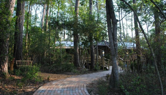 Family Tree Recipes Cafe is a Charming Treetop Restaurant