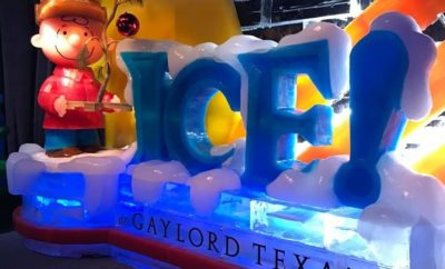 ICE! Exhibit Now Open at Gaylord Texan Resort in Grapevine