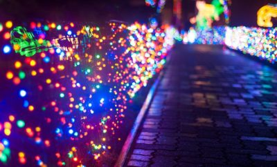 Zoo Lights at San Antonio Zoo Will be Bigger & Brighter Than Before!
