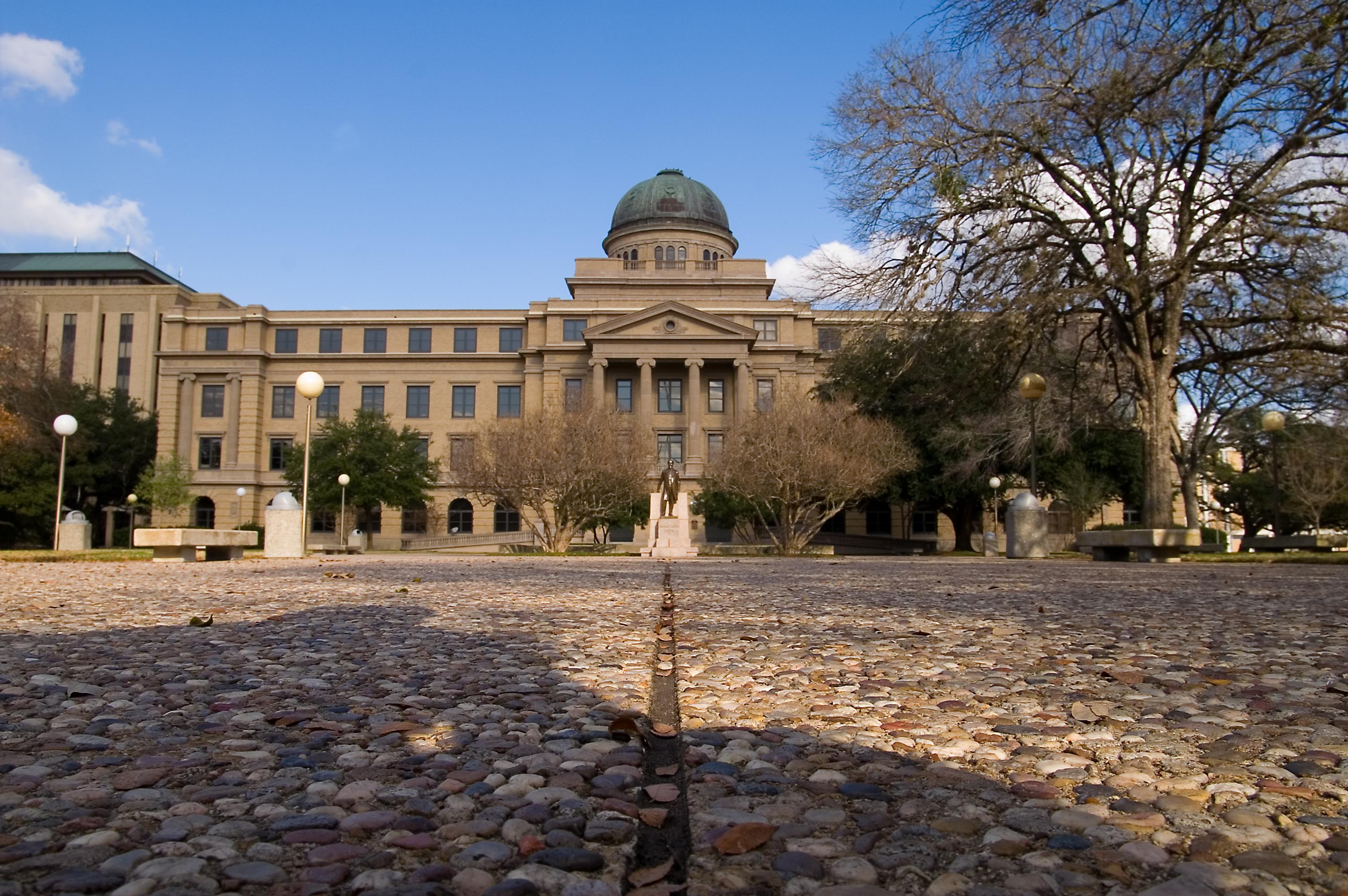 Online phd texas schools
