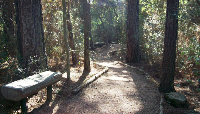 15 Best Bike Trails in the Hill Country
