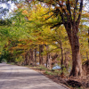 15 Great Bike Trails in the Hill Country