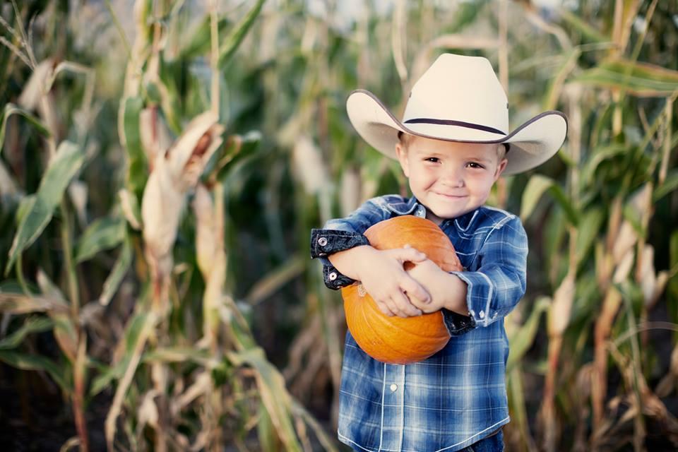 Barton Hill Farms Pumpkin Cowboy
