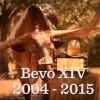 Bevo's Final Farewell [VIDEO]