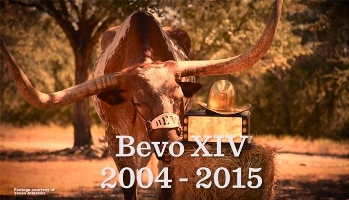 Bevo's Final Farewell