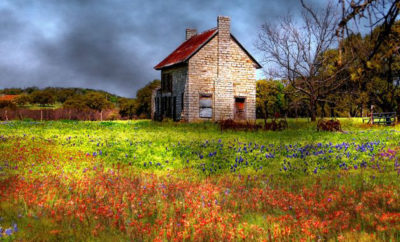 Who Built the Bluebonnet House? See the Facts: Bluebonnet House Part 3