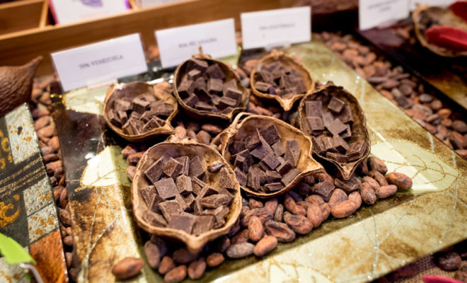 Calling All Chocolate Lovers: Dallas Chocolate Festival Returns